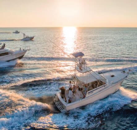 Yatch & Fishing Charters